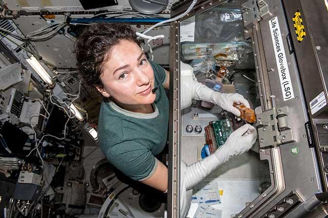 Science Division NASA